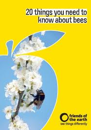 "Cover image for ""20 things you need to know about bees"" published by Friends of the Earth"